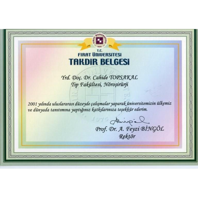 Dr. Cahide Topsakal Fırat Üniversitesi Takdir Belgesi