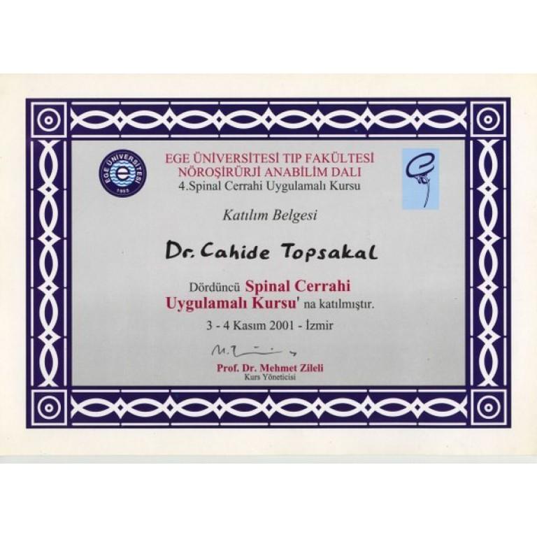 Ege üniversitesi tıp fakültesi noroşirurji anabilim dalı 4 spinal cerrahi uygulamalı kursu katılım belgesi dr. Cahide topsakal